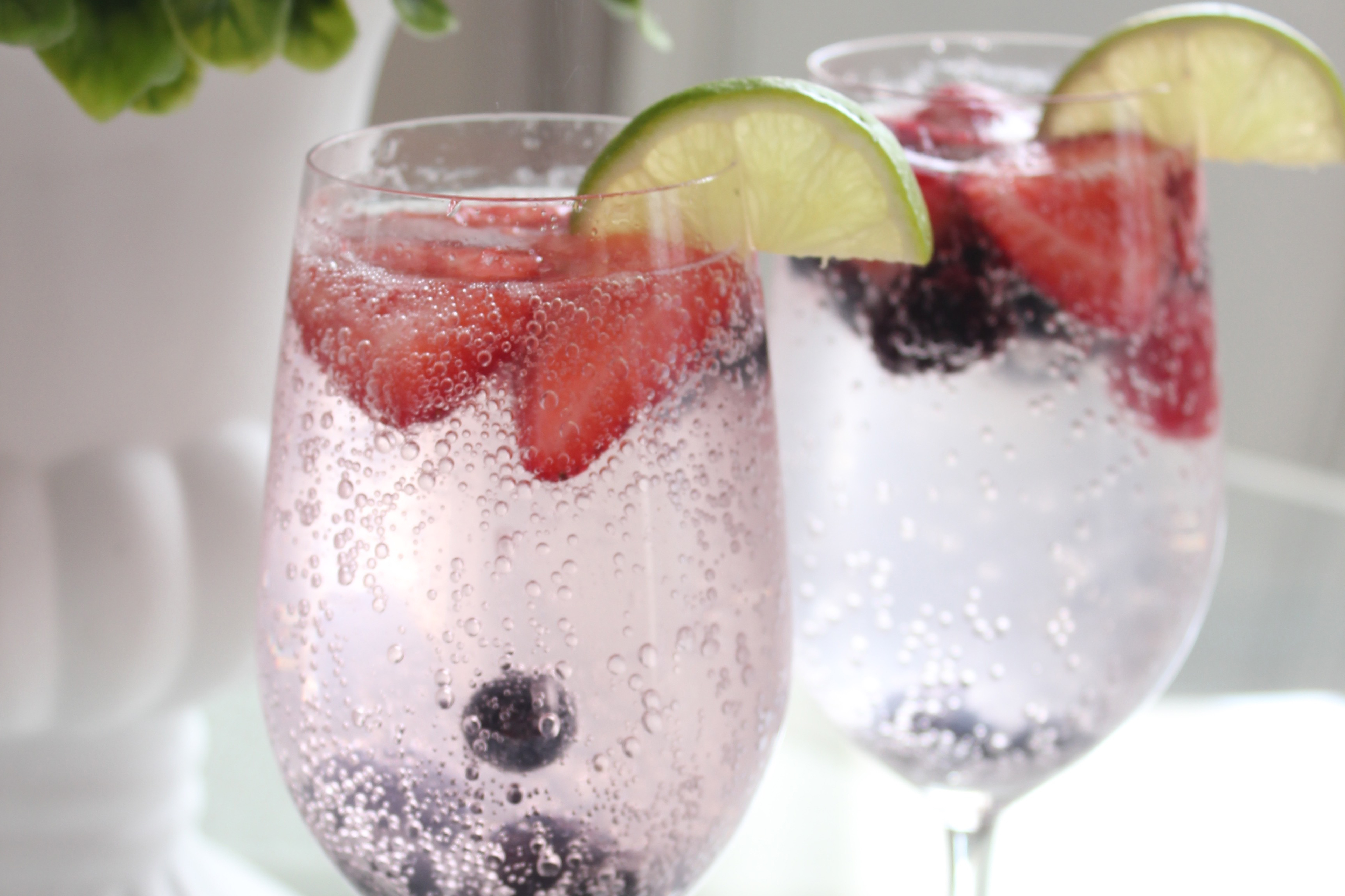 Berry Lime Spritzer
